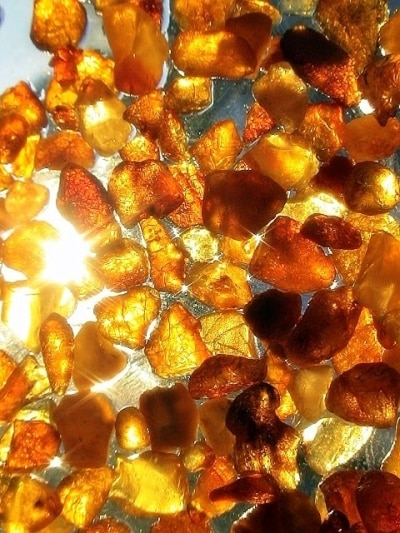 Amber Kashmir Oil
