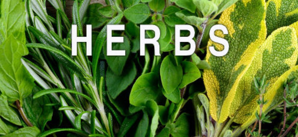 Herbs For Calming